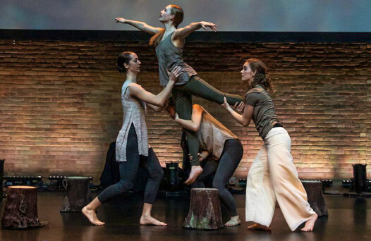 Celebrate dance academy